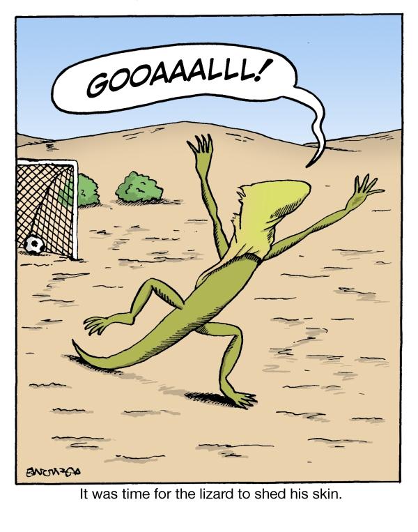 (16c)lizard